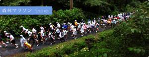 forest_marathon