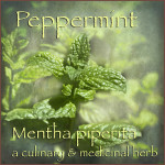 pepper-mint-medical